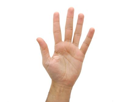 백인 열린 남자 손. 다섯째 제스처 흰색 배경에 고립