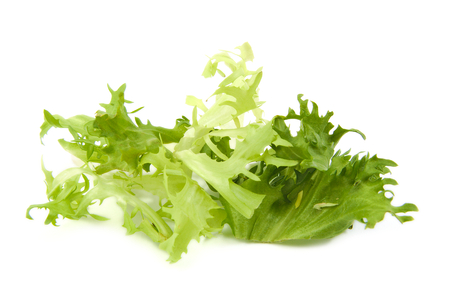 escarole: Fresh green lettuce leaves on a white background Stock Photo