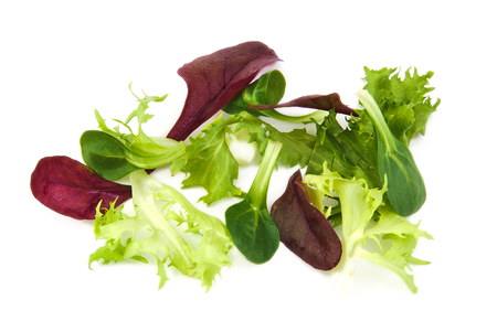 escarole: Fresh green and purple lettuce, corn salad leaves on a white background