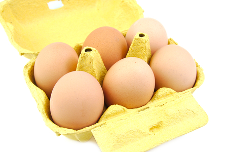 completed: Half a dozen eggs in a green carton viewed from the front.  Stock Photo