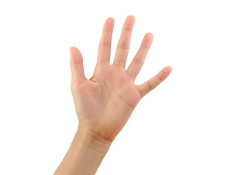 mãos: Mão da menina que mostra cinco dedos isolados no fundo branco. número 5 Imagens