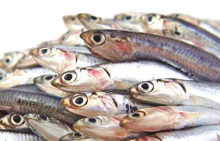 fish vendor: Anchovies