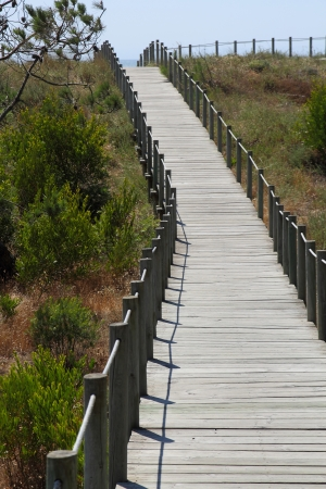 Wood pathway to the beach Stock Photo - 17533916