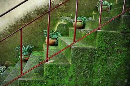 Old stairs photo
