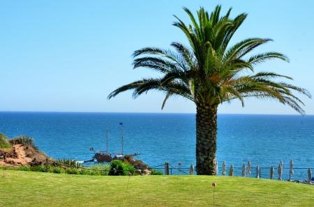caravelle: Portugais caravelle voile le long de la c�te de l'Algarve Banque d'images