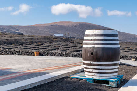 view of a vineyard where the grapes are processed and the exquisite wine is extracted Lanzarote, Canary Islands Spain