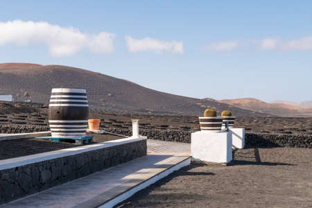 beautiful view of volcanic elevations, vineyards and barrels of exquisite wine Lanzarote Canary Islands, Spain