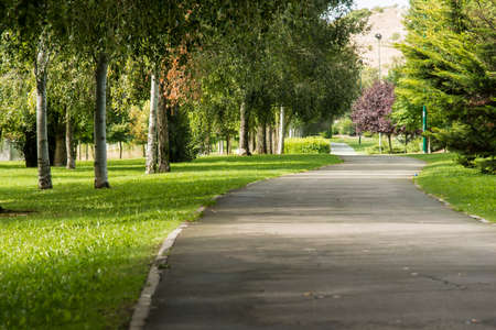 city park: way through a lonely park