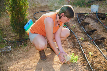 Woman preparing the soil and planting vegetables in her garden