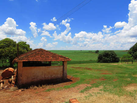 Rustic traditional shed at the farm. There are soy plantation in the scenery and the sky is bright blue