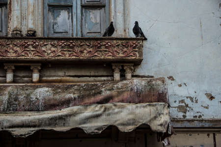 Black pidgeons near the window of an abandoned house with a red tilt above them