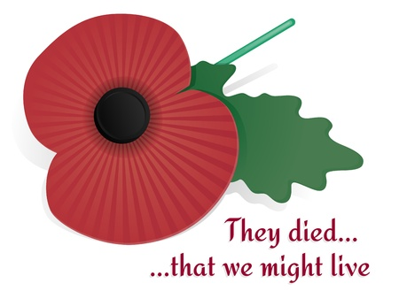 Remembrance Poppy Card Vector