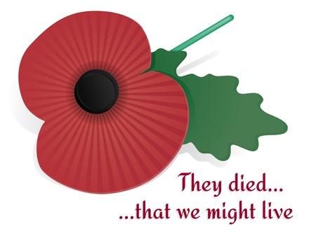 remembrance day: Remembrance Poppy Scheda Vettoriali
