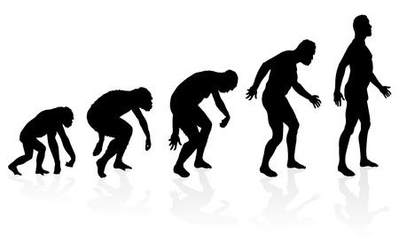 hominid: Evoluzione dell'Uomo Vettoriali