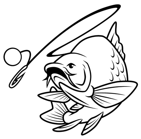a freshwater fish: Fish leaps for Bait Illustration