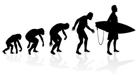 origen animal: Evolución de la persona que practica surf
