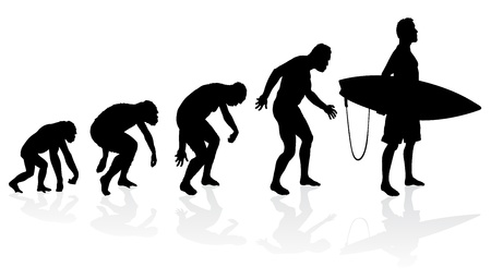 Evolution of the surfer