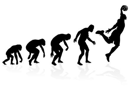 origen animal: Evolución de un jugador de baloncesto