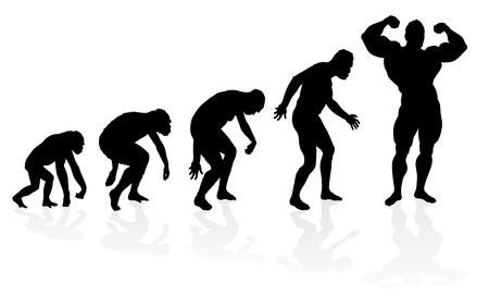 Evolutie van de bodybuilder Stock Illustratie