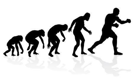 origen animal: Evolución del boxeador de peso pesado. Gran ejemplo de que representa la evolución de un hombre del mono al hombre de peso pesado boxeador en silueta.