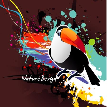 color bird abstract vector