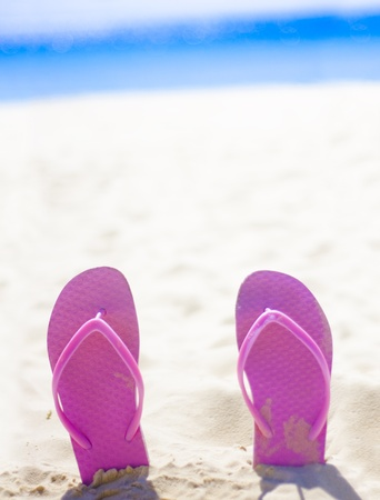 Pink Thongs Or Flip Flops Buried Heel Up In The Sand Of A Lush Beach Landscape With Text Copyspace Above photo