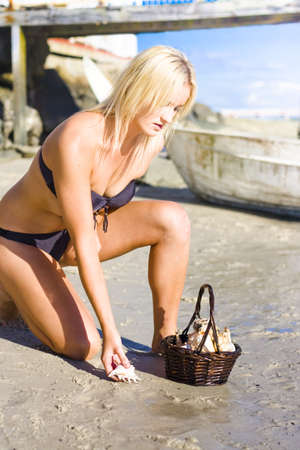 Cute Environmental Woman Kneeling Down At A Sunshine Beach Location Collecting Sea Shells From The Ocean Shoreline When Discovering The Beauty In Nature photo
