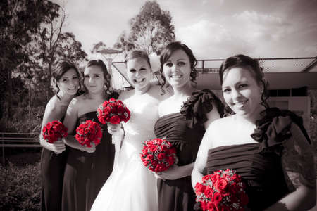 Lineup Of Bride And Bridesmaides In A Formal Wedding Photo photo