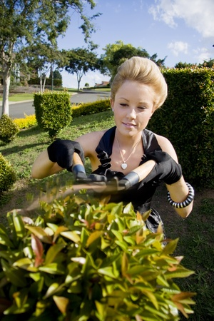 Woman Standing In Her Front Garden With A Pair Of Gardening Shears Trimming A Garden Hedge photo