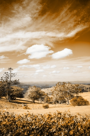 Sepia Photograph Of A Picturesque Australian Farm Landscape Scene photo