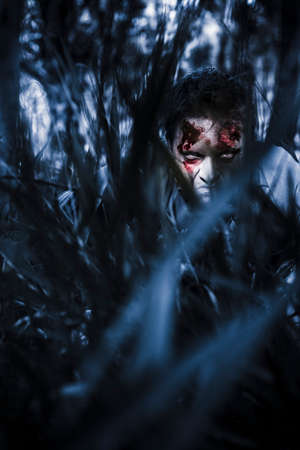 evil man: Scary blue horror scene of an evil man hiding in thick grass at a dark silent forest waiting for a revenge attack. To kill or be killed