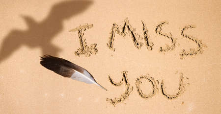 miss you: Like A Feather Ripped From The Chest Of A Gull, Something Has Been Missing Since The Day You Took Flight