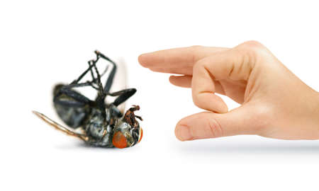 eradicate: Give Pests The Flick With An Isolated Hand Flicking A Huge Dead Fly