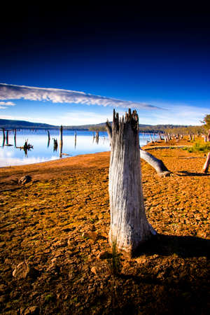 furnish: Log On The Dry And Cracked Embankment Of Lake Leake In New Norfolk, Tasmania, Australia. Lake Leake is a man made lake constructed in 1883 to furnish Campbell Town with a permanent water supply.