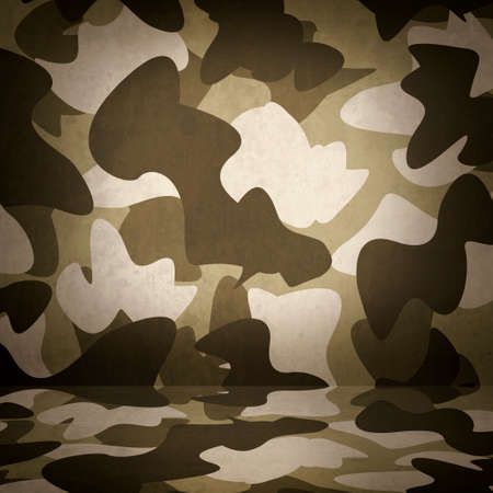 militia: Camouflage military interior background with army wall and floor copy space