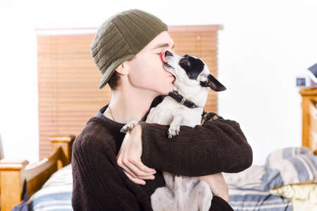 sweet home: At home portrait of a small dog kissing his male owner. Pet love Stock Photo
