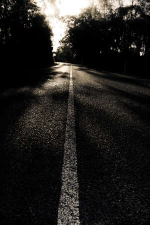 vast: Black And White Dark Empty And Vast Stretch Of Rural Transportation Road Shadowed By Overhead Foliage During An Afternoon Sunset Stock Photo