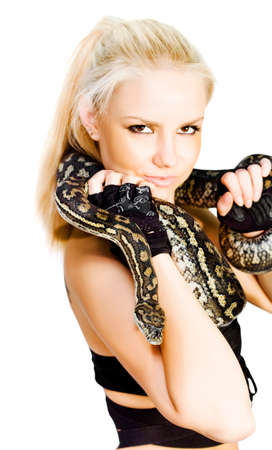 handler: Attractive blonde woman with a variegated python entwined around her neck holding the head to the camera for a portrait in a snake handler concept Stock Photo