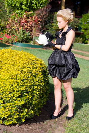lunacy: Strange Rich Woman Watering Her Garden Hedge With A Teapot Stock Photo
