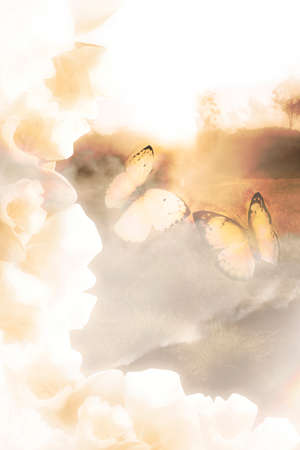 soul mate: Two butterfly soul mates flying through a foggy fantasy void in a romantic connection of dreams Stock Photo