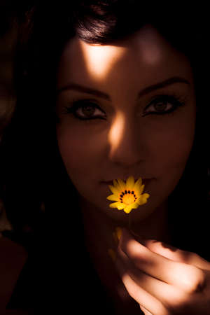 dimly: In Purity Harmony And Femininity A Woman Peering Out Of The Dimly Lit Shadows Kisses A Yellow Sun Flower Gesturing Affection Warmth And Care Stock Photo