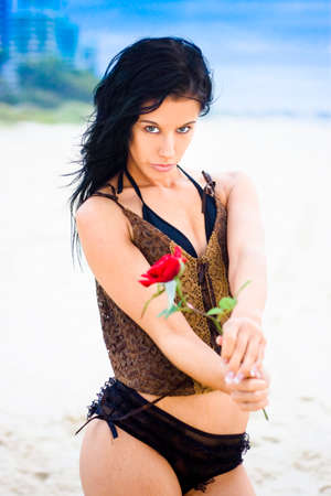poignant: Pretty Bikini Female Holding Out A Single Red Rose With Seductive Expression Of Invitation And Quiet Confidence With Serene Beach And Blue Sky Background Stock Photo
