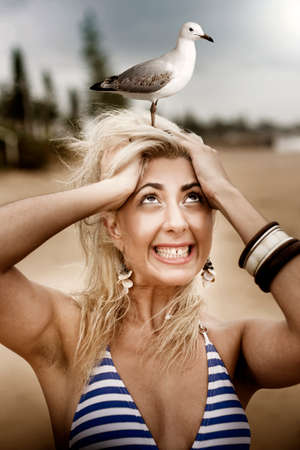 aghast: Fearful Beach Going Woman Scared Of Birds Has A Panic Attack When A Gull Lands On Her Head In A Surprise Shock And Fear Concept