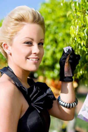 treasurer: A Prosperous Business Woman Reaps The Wealth She Has Sown And Tendered To When Pulling An Australian 5 Dollar Note From A Money Tree In An Image Of Growing Personal Wealth Stock Photo
