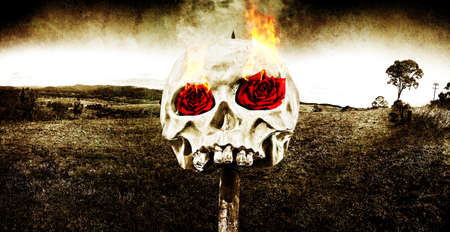 nether: Dark Morbid Photo Of A Skull On A Wooden Stake With Burning Rose Eyes On A Gloomy Landscape Background