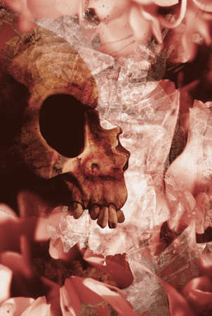 corpse flower: Creative halloween still-life image of contrasting skulls and flowers overlaid in a grunge abstract design. Art of love and death