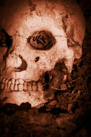 assassinate: Bloodshed With A Human Skull Layed Slayed In The Battle