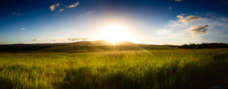 grassy field: Sunset On A Picturesque Panoramic Countryside Landscape Scene
