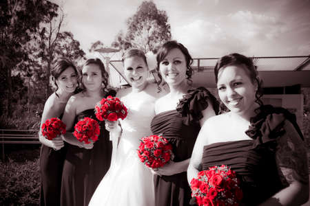 lineup: Lineup Of Bride And Bridesmaides In A Formal Wedding Photo