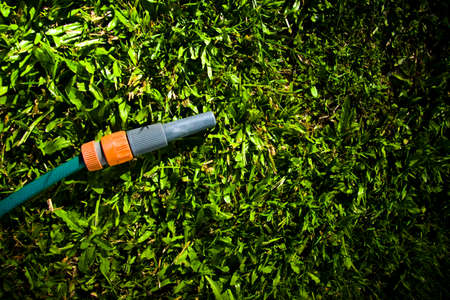 dampen: Garden hose with spray attachment lying on green grass in a lawn maintenance and gardening care concept with copyspace Stock Photo